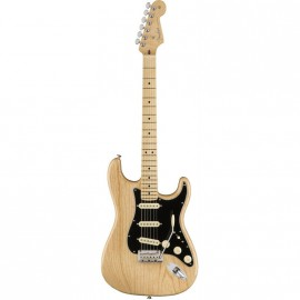 buy-fender-american-professional-stratocaster-mn-natural-odessa